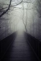 footbridge_into_fog